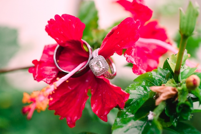 Hilton Rose Hall Resort Amp Spa Wedding Montego Bay