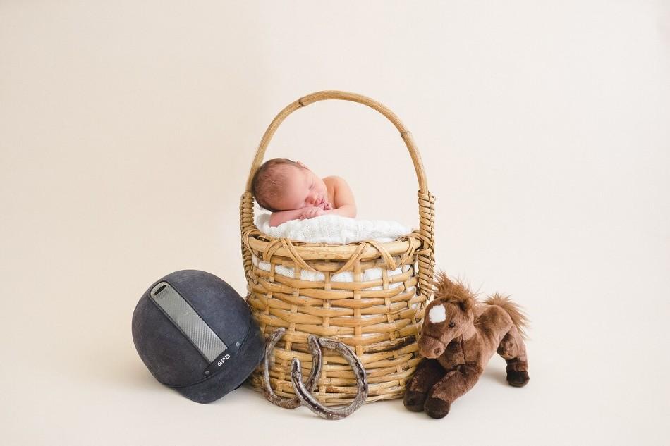 Newborn-photography-horse