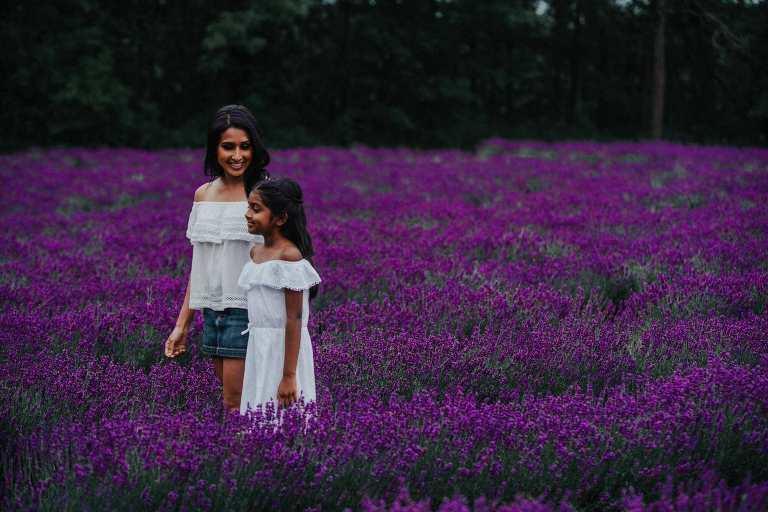 Laveanne Lavender