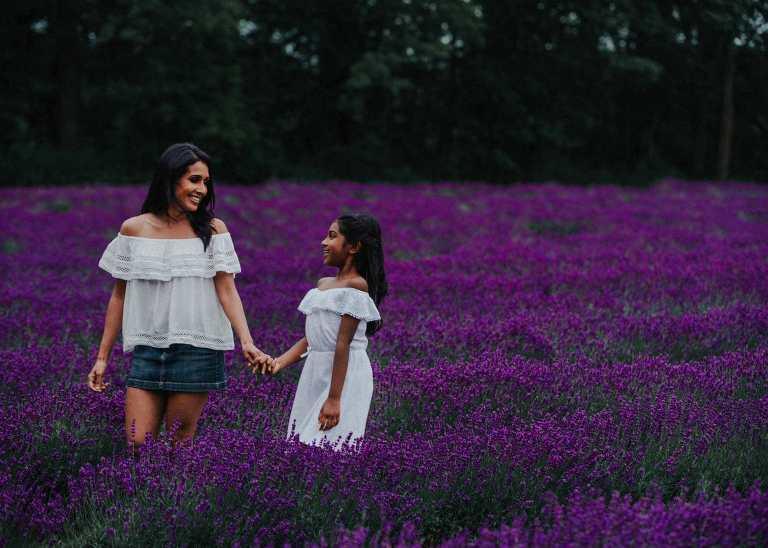Lavender Fields Ontario