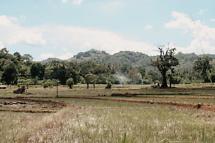 Sri Lanka 2007-8_resize