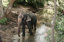 Sri Lanka 2007-9_resize
